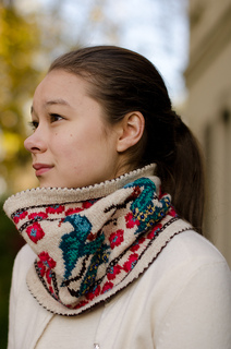 Peacockcowl-2_small2