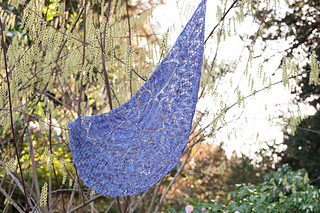 Melissa_s_shawl__44_of_48__small2