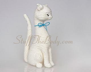 Cat5_small2