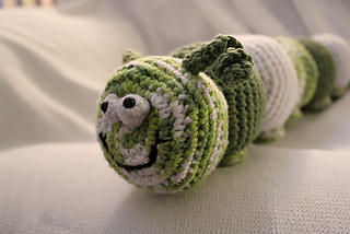 Caterpillar_close_up_small2