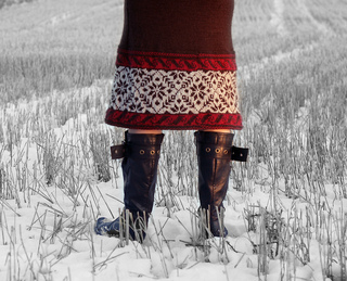 Winter_skirt_1_small2