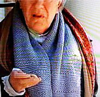 Mr_woodhouse_scarf_pic_small2