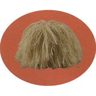 Oval_mop_small2