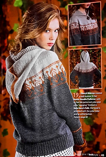 Rustic_hoodie_pullover_lge_small2