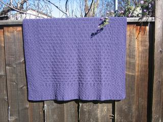 Purple_blanket_on_fence_straight_on_20110209_small2