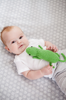 234_cgenevehoffmanphotography_friendlylizard_oneskeinforbabies_small2