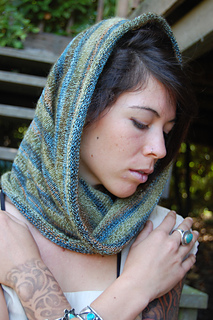 Seattle_cowl_2_small2