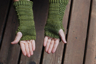 Coon_creek_mitts_and_reed_late_august_2013_022_small2