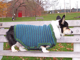 Rileysweater3_small2