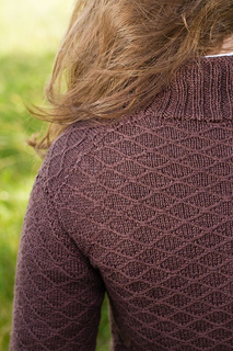 Springer_back_detail_small2