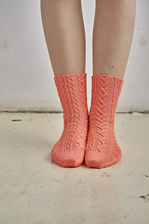 Lo_res_coopey_2392_for_sock_small2