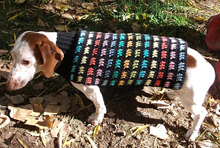 Ravelry Crochet Dachshund Or Small Dog Sweater Pattern By