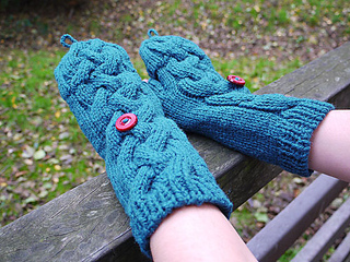 Mitten_covered_small2