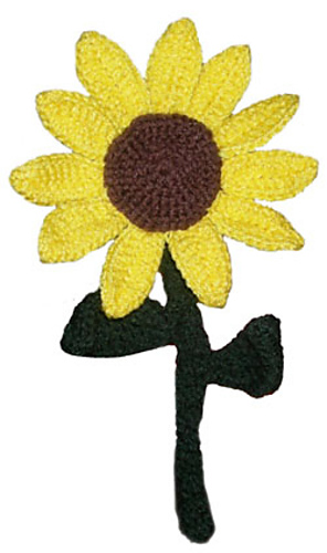 Sunflower_medium