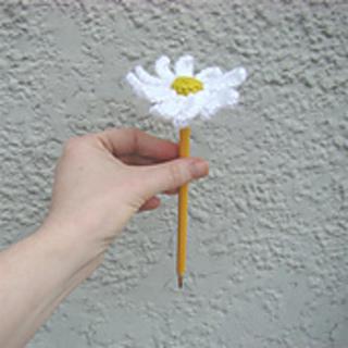 Daisy_1_small2