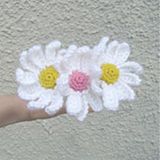 Daisy_5_small2