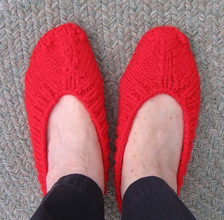 Ballet_style_slippers_from_top_small2