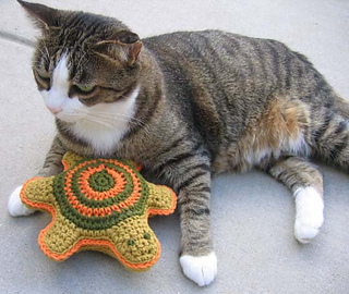 Pet_toy_turtle_w_bill_2_small2