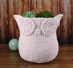 Owl_bas_1_small