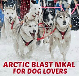 Arctic_blast_mkal_for_dog_lovers_small2