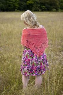 Summer_rose_3_small2