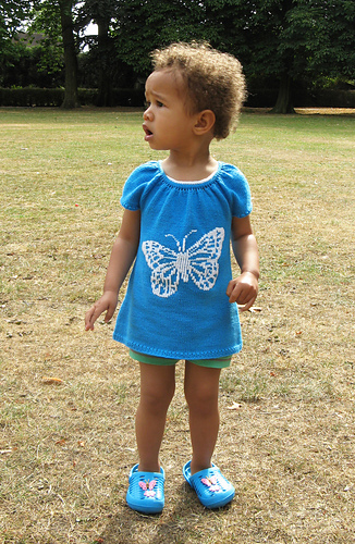 Butterfly_front1_medium