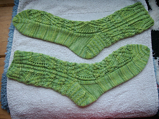 Finished_pieries_small2
