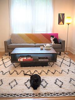 Kitties-and-heirloom-chevron-blanket-small_small2