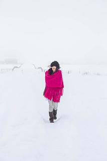 Bramble_in_the_snow-13_small2