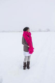 Bramble_in_the_snow-22_small2