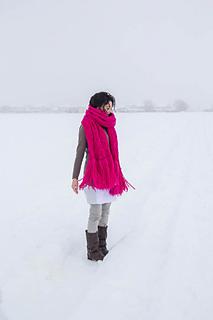 Bramble_in_the_snow-23_small2