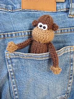 Pocket_monkey_4_small2