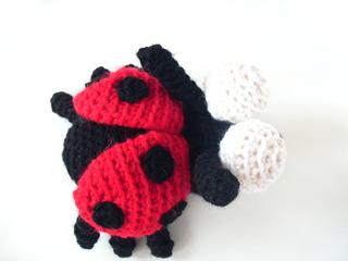 Ladybug2_small2