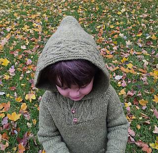 Robinhoodie4_sm_small2