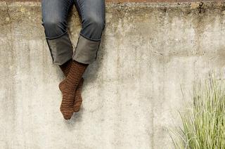 Shibui-socks-ankeny-1_small2