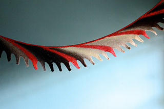 Plumage_small2
