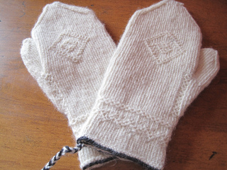 Twinned_mittens_1_small2
