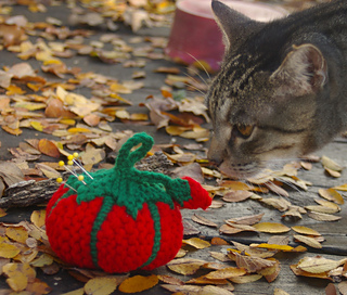 Heirloom_sniffed_by_pretty_kitty_small2