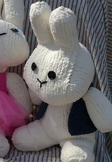 2_bunnies_on_carrot_fabric_small2