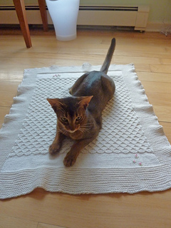 Whose_blanket_small2