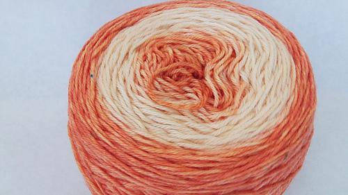 Apricot_thrilling_2_medium