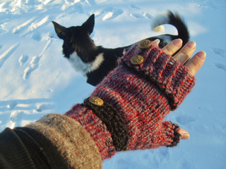 First_snow_mitts_1-11__12__small2