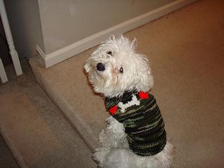 Marshmallow_bone_sweater_small2