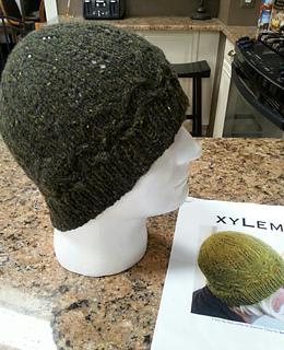 Xylem2_small2