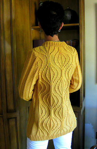 Gyro_cardi_yellow_back_2_medium