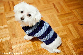 Maltese Dog Knitting Pattern : Ravelry: Linus Sweater pattern by Diana Levine