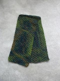 Cimg3418-scarf_small2