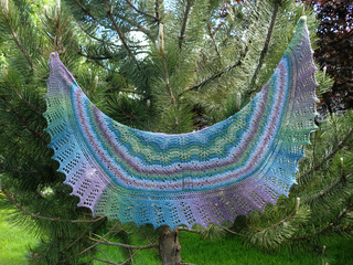 Cimg3961-wholeshawl_small2