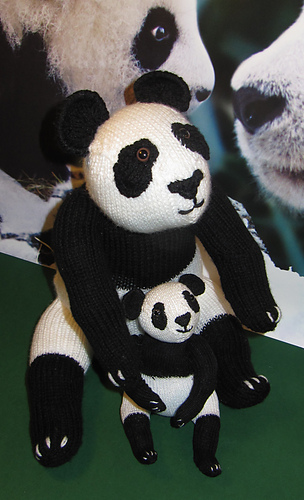Panda_and_baby16_medium