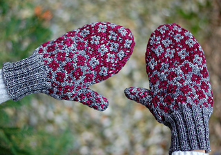 Fractured_fairy_tale_mittens_plucky1_small2
